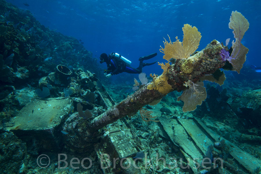 chinchorro_shipwreck_beobrockhausen_jr24055